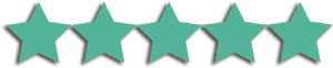 5 star customer recommendations